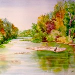 Maumee River at Grand Rapids OH
