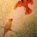 Cardinal Feeding Its Mate